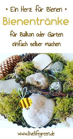 Ein Herz für Bienen – Bienentränke selber bauen Bees are also thirsty. And that is precisely why there is a quick and uncomplicated DIY project for your garden or balcony. We build a bee trough from baking dishes, coasters and soup plates.
