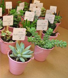 Mini sukulent, mini succulent, kaktüs, cactus, wedding favors, nikah şekeri, nikah hediyesi, babyshower ~ by Atolyeylul