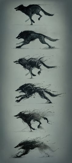 Hunger is a monster by Platine Images Wolf Sketch / Drawing Animation Illustration Inspiration Fantasy Kunst, Fantasy Art, Fantasy Wolf, Creature Design, Mythical Creatures, Dark Art, Amazing Art, Cool Art, Concept Art