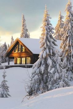 SEASONAL – WINTER – a new-fallen snow appears so peaceful, but still gives me the chills at this snow cabin in sjusjoen, norway, photo via spiritof. Winter Szenen, Winter Cabin, Winter Time, Norway Winter, Winter Sunset, Beautiful World, Beautiful Places, Amazing Places, Snow Cabin