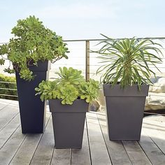 Square planters update the outdoor classic with strong lines in sleek, galvanized steel for a clean, contemporary look. Lightweight planters can be easily positioned around the garden or patio and will weather naturally over time.