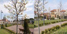 """Impegni di lavoro a Udine?  soggiorno in centro storico (all'Astoria Hotel Italia!) passeggiata nel cuore della città e corsetta rilassante nel nostro ... """"Central Park""""! What else?!"""