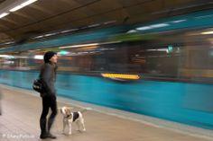 U-Bahn Frankfurt von Peter Stumpf