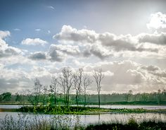 "Check out new work on my @Behance portfolio: ""Overasseltse and Hatertse Marsh"" http://be.net/gallery/31670245/Overasseltse-and-Hatertse-Marsh"