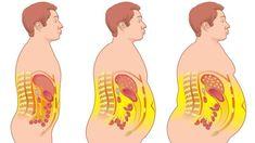 Come los siguientes 16 alimentos quemagrasas con regularidad, y perderás grasa casi sin esfuerzo. Una forma eficaz de perder peso es hacer una alimentación