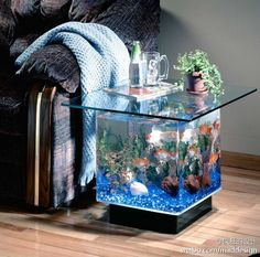 If you loved the 25 Gallon Coffee Table Aquarium but are a bit hesitant because you were in need of something that is that bit smaller then you are going to absolutely love this. Here it is, the smaller 15 Gallon Coffee table aquarium! Aquarium Terrarium, Diy Aquarium, Aquarium Design, Table Aquarium, Tropical Aquarium, Aquarium Fish Tank, Aquarium Stand, Aquarium Photos, Aquarium Garden