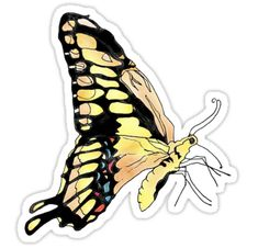 Buy 'Giant Swallowtail Butterfly' by Scribblestudio as a Sticker, Transparent Sticker, or Glossy Sticker
