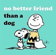 'No Better Friend Than a Dog', Charlie Brown & Snoopy Peanuts Cartoon, Peanuts Snoopy, Peanuts Comics, Snoopy Quotes, Dog Quotes, Peanuts Quotes, I Love Dogs, Puppy Love, Charlie Brown Und Snoopy