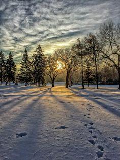 Winter by Jana Allingham