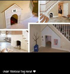 Under staircase dog house- The girard house would be perfect for this since it already has an easy access point