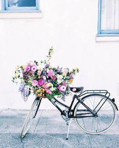 flowers, spring, and bike afbeelding