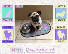 Shame your dog today! Sometimes they just do inappropriate things! Remember these moments with our dog shaming cards!  Purchase today and the DIGITAL PDF file is INSTANTLY available for you to download and print.  Sometimes all you need is that one card that speaks a million words. Our inappropriate cards will give you hours of entertainment. Prop these cards next to your naughty furry baby and take a snapshot. Dont forget to use our hashtag #TNBDog when you share it online.  This purchase…