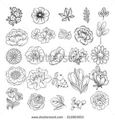 Find Succulent Flowers Line Art Drawing Set stock images in HD and millions of other royalty-free stock photos, illustrations and vectors in the Shutterstock collection. Flower Mandala, Flower Art, Beautiful Flower Drawings, Drawing Flowers, Hand Drawn Flowers, Floral Doodle, Flower Sketches, Desenho Tattoo, Plant Drawing