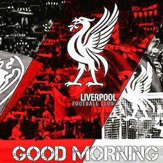 Liverpool, Good Morning, Red, Buen Dia, Bonjour, Good Morning Wishes