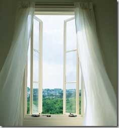 French windows allows the link between the outside world and the inside world.... they have to be very tall and allow ample sunlight. The height plus the super long extravagant curtains will give you the elegance that your Parisienne Salon needs!