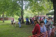 Story City residents wait in line for pony rides during this year's Scandinavian Days. The Story City tradition is celebrated 50 years this weekend. Photo by Julie Ferrell/Ames Tribune   http://amestrib.com/news/story-city-celebrates-50-years-scandinavian-days