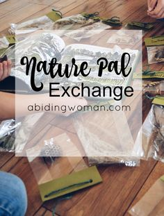 Have you heard of Nature Pal Exchange? Such a great program! Families in US and Canada swap nature finds from their local area. Great nature study activity!