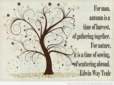 peace Quotes loving quote about family in tree design cute one ...
