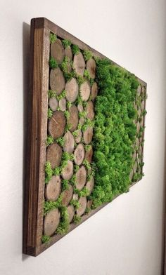 Preserved Moss Wall Art - Mothers Day - Nature Wall Art - Moss Art Painting - Rustic Home Decor - Preserved Living Wall - Vertical Garden by TheNorthSides on Etsy - Salvabrani Moss Wall Art, Moss Art, Diy Wall Art, Diy Wand, Mur Diy, Garden Wall Art, Garden Walls, Wall Garden Indoor, Garden Mural
