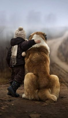 No love as strong as that with your dog