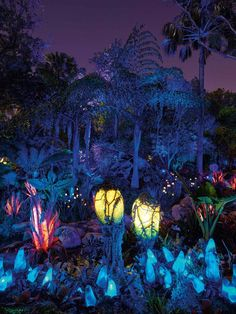 >>>Pandora Jewelry OFF! >>>Visit>> Disney and Joe Rhode bring Pandora Art to Orlando Museum of Art Aug. Fantasy Places, Fantasy World, Fantasy Art, Orlando Museum Of Art, Deco Jungle, Kino Film, Expo, Fantasy Landscape, Disney Wallpaper