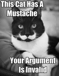 Mustache. That's awesome.