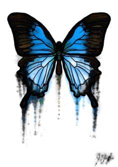 'Evanescing Butterfly' by Jennifer Nigh.