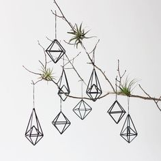 Himmeli Ornaments A modern invention inspired by a Finnish tradition, these Himmeli ornaments look great on a bare branch or make a mobile too.