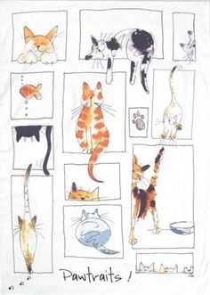 New cats illustration watercolor kitty ideas I Love Cats, Crazy Cats, Cute Cats, Cat Drawing, Painting & Drawing, Illustrations, Illustration Art, Photo Chat, Cat Quilt