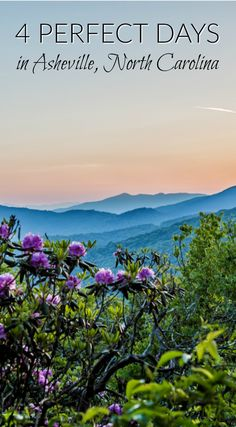 4 Perfect Days and Our Favorite Things to do in Asheville via @divergenttravel