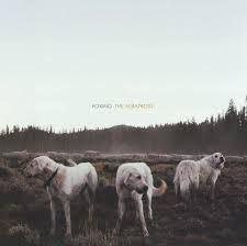 Foxing - The Albatross