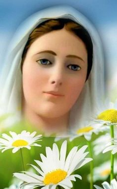 Blessed Mother Mary, Blessed Virgin Mary, Mary And Jesus, Holy Mary, Faith Prayer, Our Lady, Gods Love, Madonna, Christianity