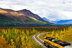 Ride the Denali Star, the Alaskan train that winds through the spruce trees of Denali Park.