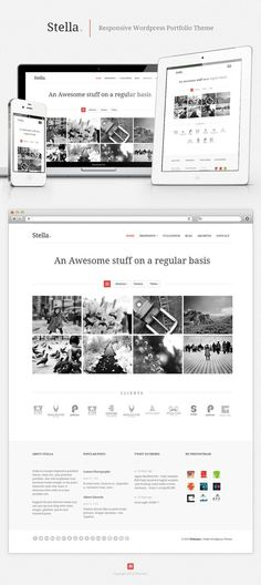 Stella Responsive Wordpress Portfolio Theme by ~vennerconcept