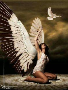 White Wings Angel And Dove Near Golden Sky Dark Angels, Fallen Angels, Angels Among Us, Angels And Demons, Fantasy Kunst, Fantasy Art, Angel Artwork, I Believe In Angels, Ange Demon