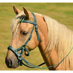 Two Horse Tack - SIDEPULL Bitless Bridle made from BETA BIOTHANE (Solid Colored).