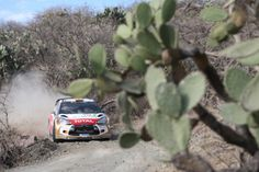 Rally Mexico: Event timetable
