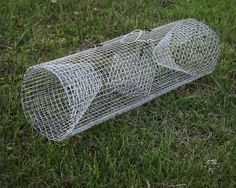 How to Make a Crayfish Trap!!!