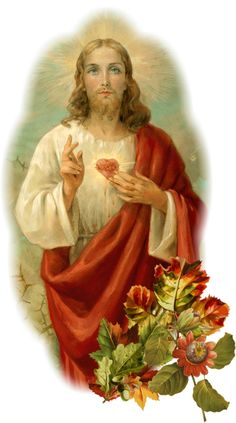 Blessed Mother Mary, Heart Of Jesus, Sacred Heart, Virgin Mary, Saints, Religion, Bible, Jesus Pictures, God