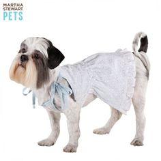 Martha Stewart Pets® Eyelet Dress | Dresses | PetSmart