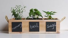 Indoor/Outdoor Herb Garden with Chalkboard Placards by Meriwether of Montana - modern - Outdoor Pots And Planters - Etsy Herb Garden Kit, Garden Boxes, Easy Garden, Indoor Planters, Indoor Garden, Outdoor Pots, Indoor Outdoor, Herb Pots, Herbs Indoors