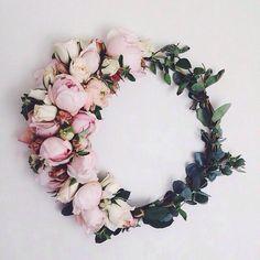 WIFI LOVE | TheyAllHateUs