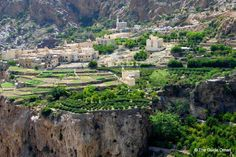 Village of roses, Jabal Al Akhdar, Oman. view on FB https://www.facebook.com/OmanPocketGuide  photo: The Guide Oman