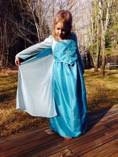 Dress Up Dress. Frozen Elsa.