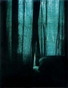 """Daniel Boudinet, Polaroïd, 1979, Frontispice de La chambre claire de Roland Barthes  — """"cette image presque monochrome, qui pourtant est la seule reproduction en couleur de l'essai, est ce que j'appelle une image-fente"""" (Olivier Beuvelet)"""