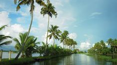 Alappuzha - a popular backwater destination in Kerala | Kerala Tourism