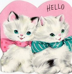 Kitten Valentine card