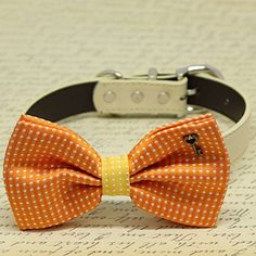 Orange and Yellow Dog Bow Tie collar, Pet wedding, Key of Heart Charm, Polka dots by LADogStore, http://www.amazon.com/dp/B076DMVFVL/ref=cm_sw_r_pi_dp_x_rGK6zb3KREZFS
