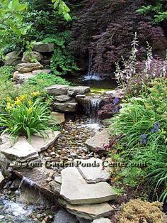 backyard ponds   Garden Ponds Home › Waterfall Pictures › Backyard Waterfall ...