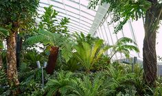 Sky Garden  - free - book online -  The terrace is open to the public between 10am - 6pm and 11am - 9pm on Saturday and Sunday.